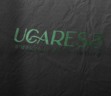 Logo UCARESS